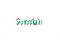 Puesto 24 - Carnicería Charcutería Senosiain